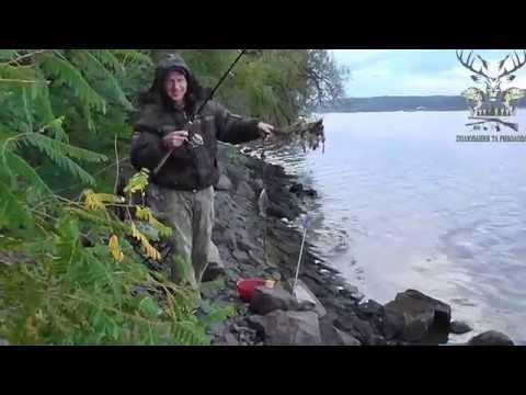 рыбалка на каневском водохранилище 2016