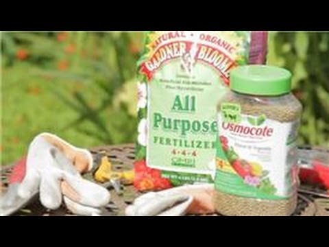 Garden Tips : Flower Gardening Supplies & Tips