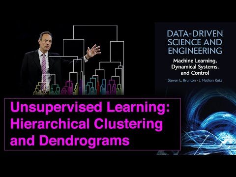 Unsupervised Learning:  Hierarchical Clustering and Dendrograms