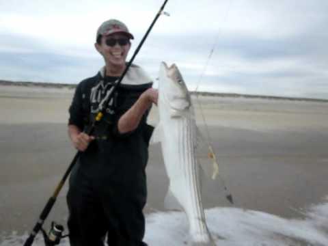 33″ Striper at Sandy Hook, NJ- May 2011