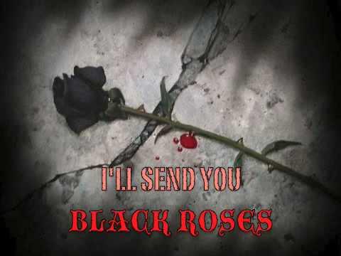 Tekst piosenki The Rasmus - Ten Black Roses po polsku