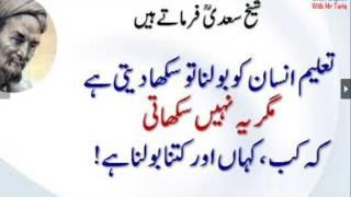 Urdu Quotes of Sheikh Saadi About Kab kaha aur kitna bolna hai Hikayat E saadi 14.