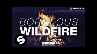 Thumbnail for Borgeous — Wildfire (Radio Rip)