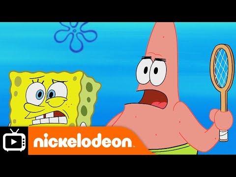 SpongeBob SquarePants   Coach Squidward   Nickelodeon UK