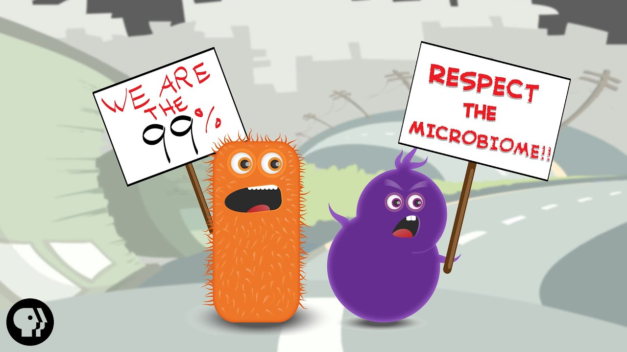 You are mainly microbe – meet your microbiome it's okay to be