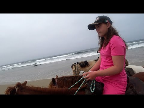 Horseback Riding in Mexico on the Beach