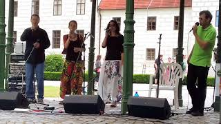 Video Přívěs (Třeboň 2017)