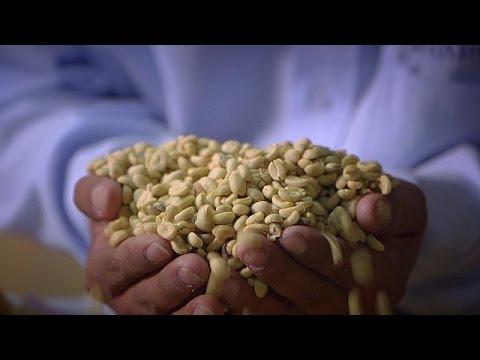Περού: Πώς το δίκαιο εμπόριο βελτιώνει τον καφέ και τη σοκολάτα μας – life