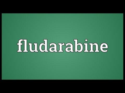 Fludarabine Meaning