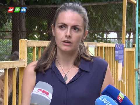 Животные в симферопольском зооуголке страдают от рук посетителей