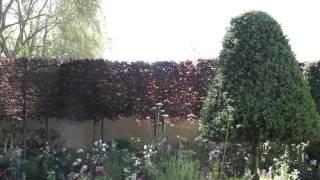 #700 Chelsea Flower Show 2012 - Der Champagner-Garten