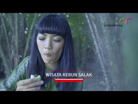 PESONA INDONESIA DESA PULESARI