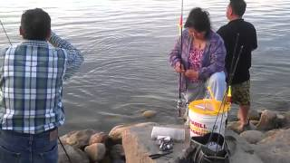 Fishing in North Dokota(devil Lake)
