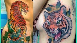 Videos y Fotos de Tatuajes de Tigres