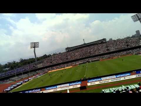 LA REBEL,  PUMAS vs cruz azul - La Rebel - Pumas