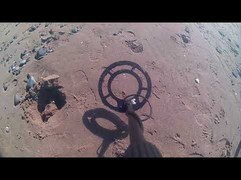 Beach Metal Detecting Test using MD3080