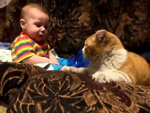 """gatto: """"bimbo, adesso è ora di dormire!"""""""