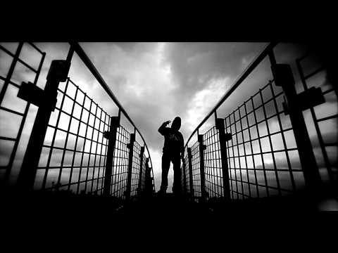 HIFI Banda- Ptaki [Oficjalna premiera]