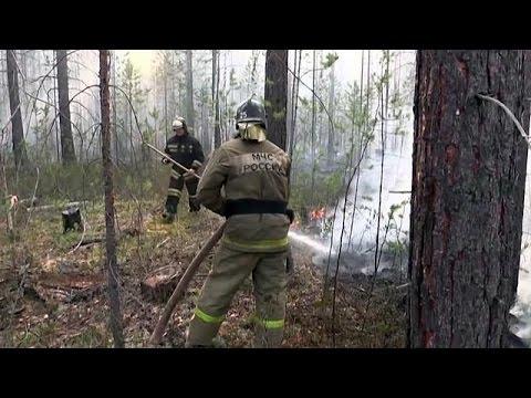 Ρωσία: Μεγάλη δασική πυρκαγιά στο Ιρκούτσκ της Σιβηρίας