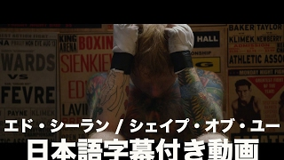 Video エド・シーラン - Shape Of You(字幕付き) download in MP3, 3GP, MP4, WEBM, AVI, FLV Mei 2017