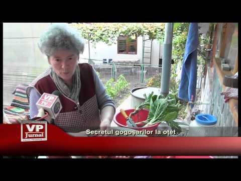 Secretul gogosarilor la otet
