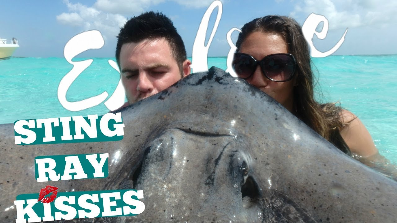 SWIMMING WITH STING RAYS!!