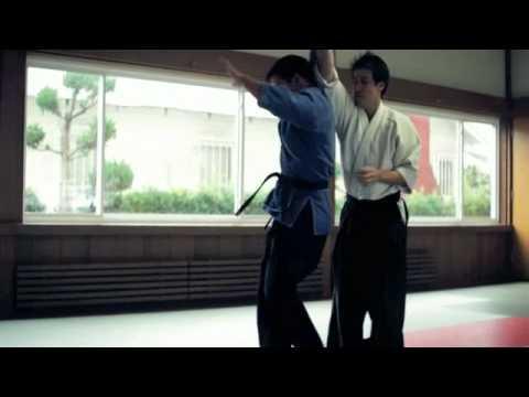 jujitsu and aikido