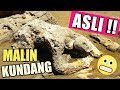 Download Lagu Malin Kundang Asli di Pantai Air Manis Padang Sumatera Barat Mp3 Free