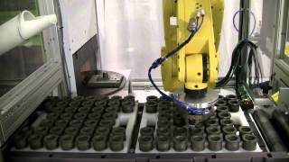 Industrial Laser Marking Systems with Robotic Part Handling