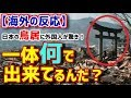 【海外の反応】「原爆や津波でも生き残ってる日本の鳥居、一体何で出来てるんだ?」【日本人も知らない真のニッポン】
