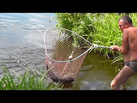 александровка платная рыбалка