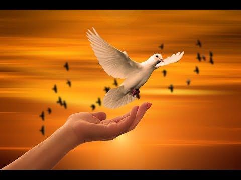 Video Ek Tu Hi Bharosa Full Prayer song with lyrics download in MP3, 3GP, MP4, WEBM, AVI, FLV January 2017