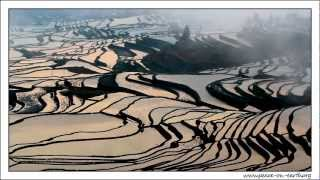 Yuanyang China  city pictures gallery : Postcard without Word - Terrace Rice Fields in Yuanyang China (4)