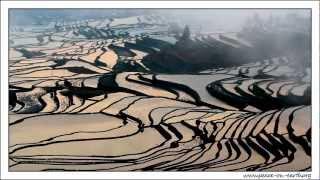 Yuanyang China  city photo : Postcard without Word - Terrace Rice Fields in Yuanyang China (4)