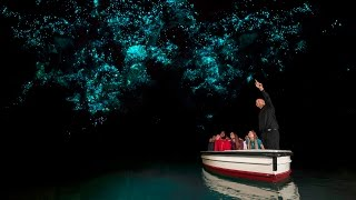 Waitomo New Zealand  city pictures gallery : Discover Waitomo Glowworm Caves | New Zealand