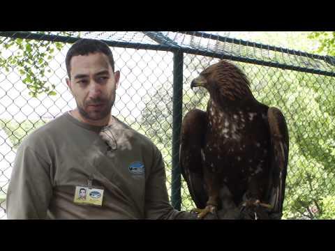 Belgrade Zoo 2011 Episode 6 Part 2