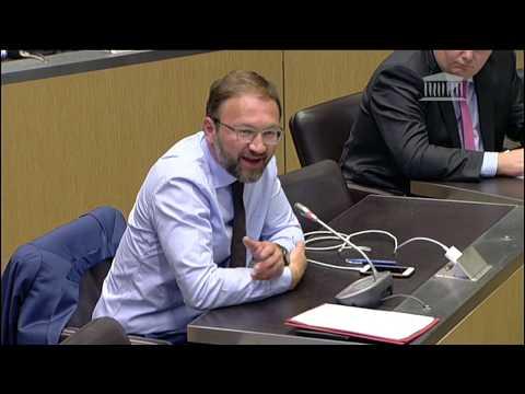 Commission d'enquête Covid - 19 - Audition Didier Raoult - Patrick Mignola