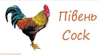 rooster, півень #draw, як намалювати півня В своєму дворі півень дуже важливий. Він пильнує курок та курчат. Кожного ранку півень будить усіх своїм співом. С...