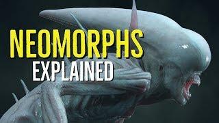 Video Neomorphs Explained (Alien Covenant SPOILERS) MP3, 3GP, MP4, WEBM, AVI, FLV Oktober 2018