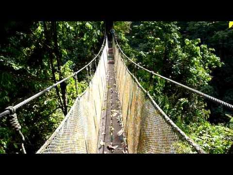 The longest bridge in Rainmaker – Quepos, Costa Rica