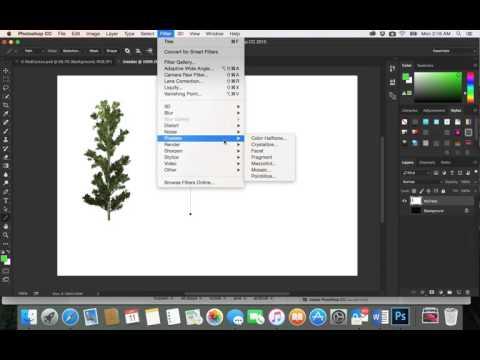 40-Adobe PhotoShop CC| Trees sizes