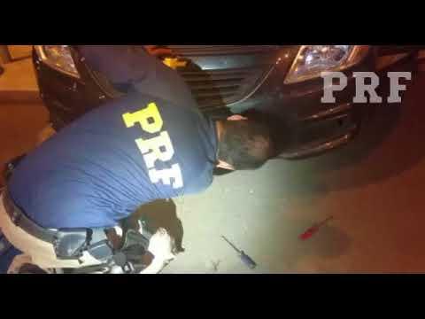 PRF apreende 151 kg de maconha ocultados em veículo locado