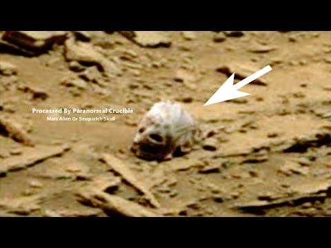 美國太空總署收到「有生物頭骨」的火星照片,原本不信的人看到放大的畫面後都臉色大變…