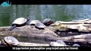 Peristiwa Di Padang Mahsyar - Ustadz Khalid Basalamah
