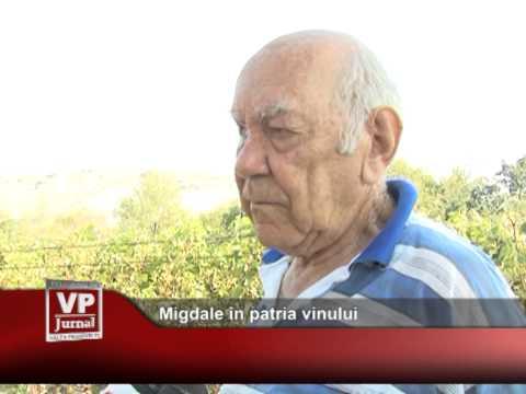 Migdale în patria vinului