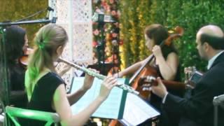 Música para casamento* *Música para casamento* *Música para casamento* - Ornamentus - Música para casamento - deixe seus comentários! Visite nosso ...