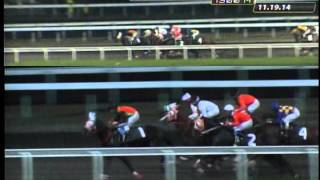 RACE 2 PRINCESS TIN 11/24/2014