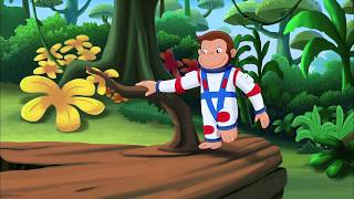 Nonton Curious George 3  Back To The Jungle   Jungle Music   Own It On Dvd 6 23 Film Subtitle Indonesia Streaming Movie Download