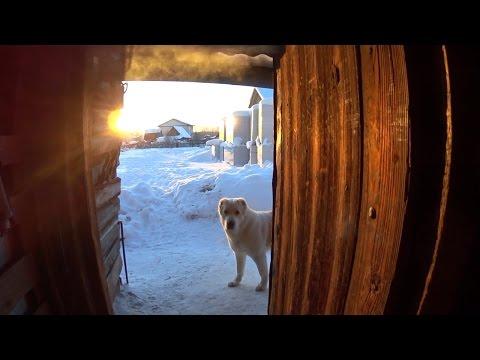 Как соблюдать гигиену в деревне // Особенности жизни в деревне // Жизнь в деревне (видео)