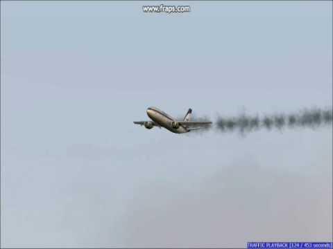 "VIDEO: Fatal AIRBUS CRASH caused by ""Air Rage"""